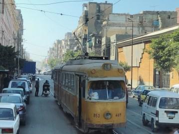 Alexandria 6