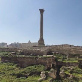 Serapeum and Pompey's Pillar 1