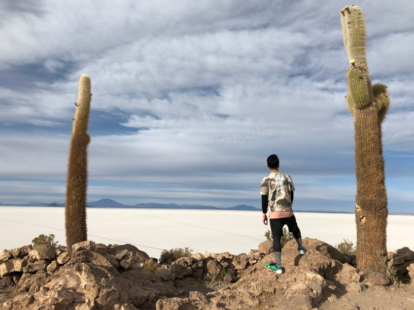 Uyuni Salt Flat, Isla Incahuasi - 5