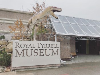 5 Drumheller - Royal Tyrrell Museum 1