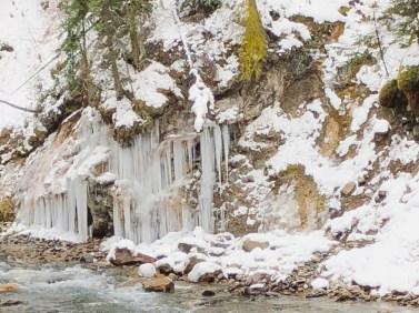Banff (16) Johnston Canyon
