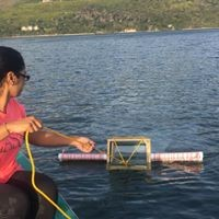 Water sampling in the Knysna estuary