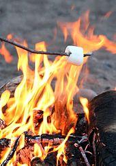 RoastingMarshmallow