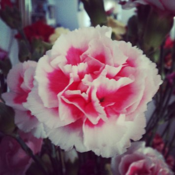 16flower