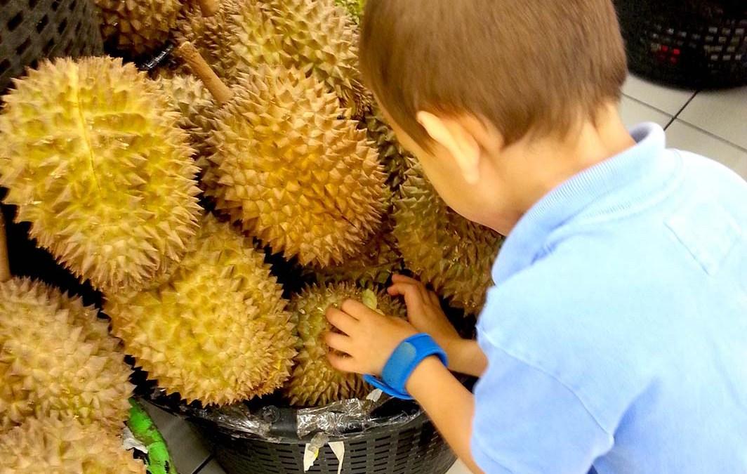 Le durian et moi