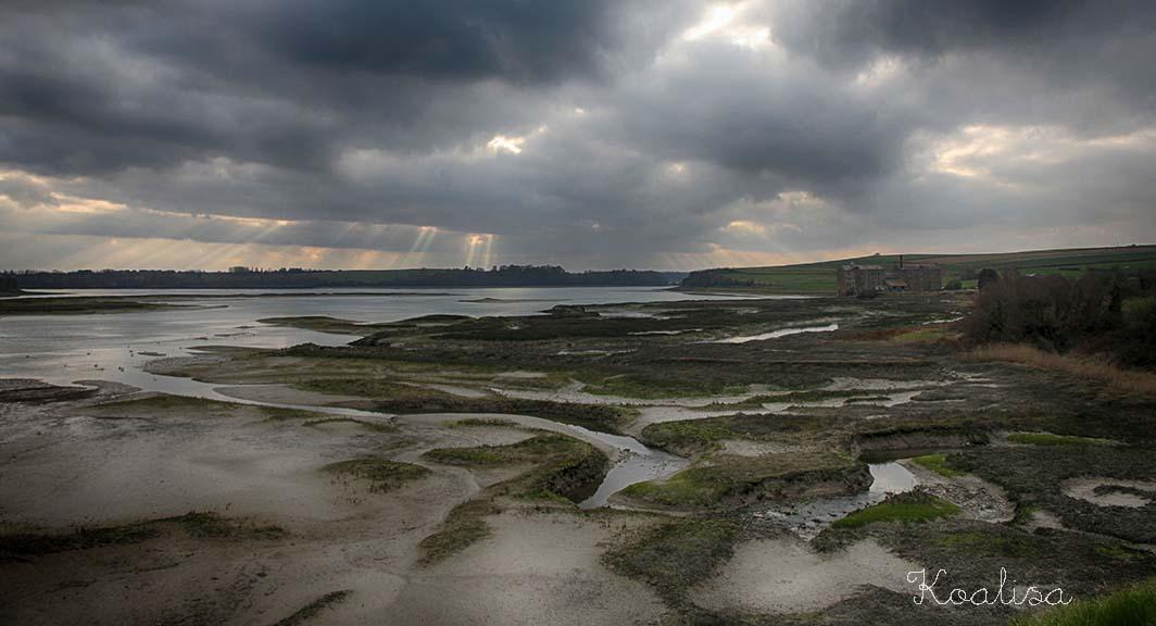 Pause photo à St Jouan des Guérets, Ille-et-Vilaine