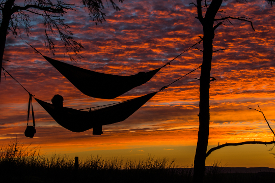 Two people sleeping in a hammock in front of a purple, orange, and yellow sunset.