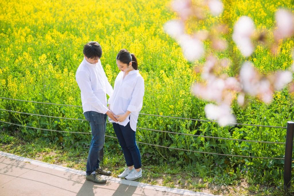 桜と菜の花が同時に楽しめるのも権現堂堤のポイント