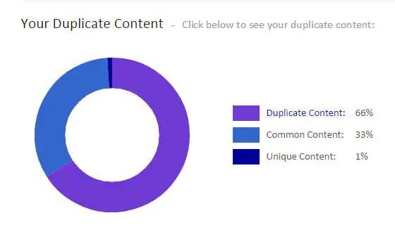 Case study - duplicate content