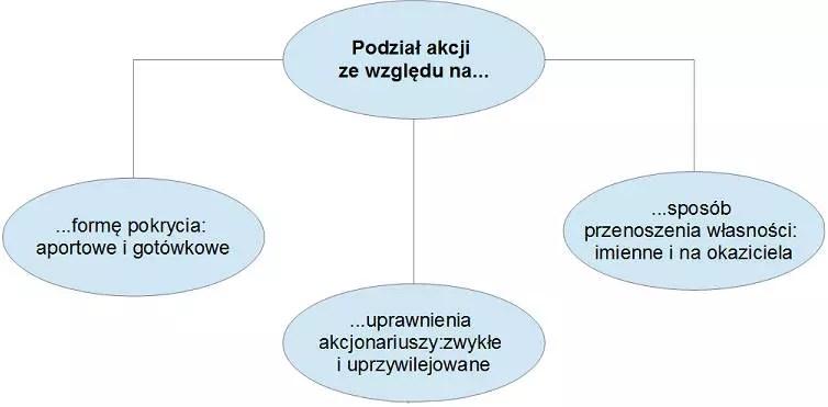Charakterystyka papierów wartościowych - rodzaje akcji, podział