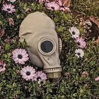 Cena smogu