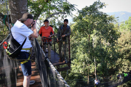Doi Tung Tree Top Walk, fot. Dorota KK (c)