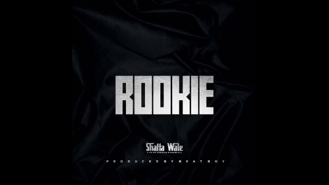Shatta wale - Rookie Lyrics