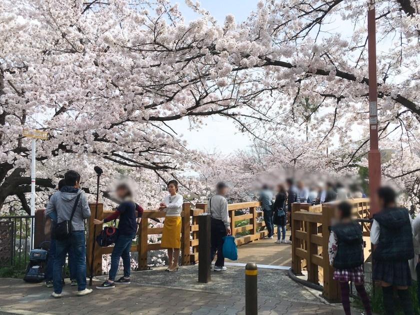 Yamazaki River Parking