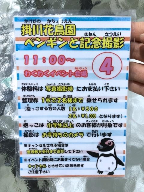 Kakegawa Kachouen Penguin