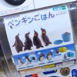 【ペンギングッズ】水族館で人気のイベントを再現♪ガチャガチャ「ペンギンごはん」 愛知県で購入できる場所