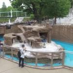 【東山動物園】DJI OSMOでペンギン舎一周バーチャルツアー?