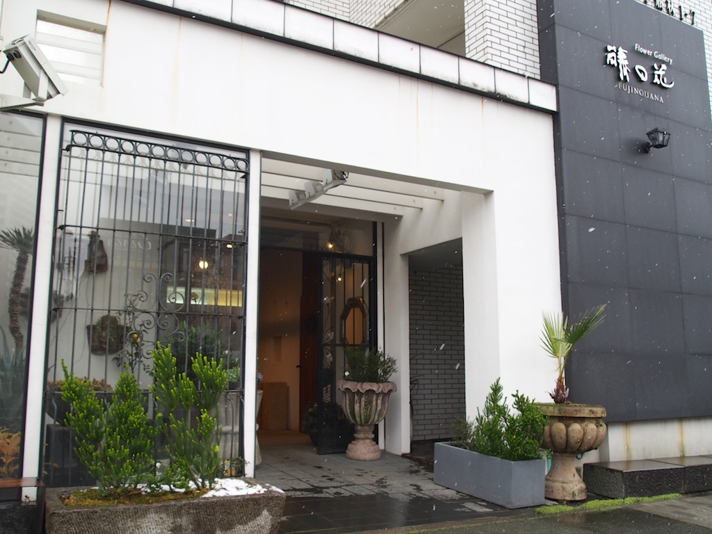 Fujinohana