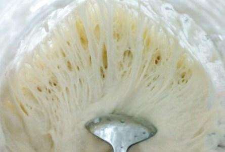 初心者向け自家製天然酵母ガイド!簡単な作り方&憧れルヴァン種も!