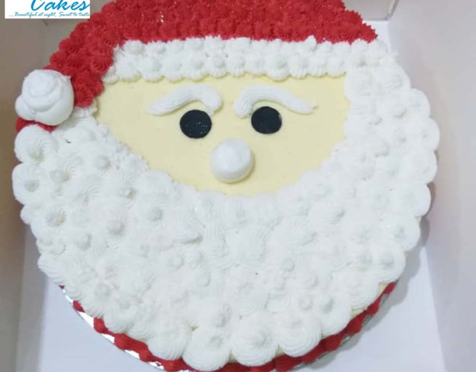 Santa Claus Birthday Cake