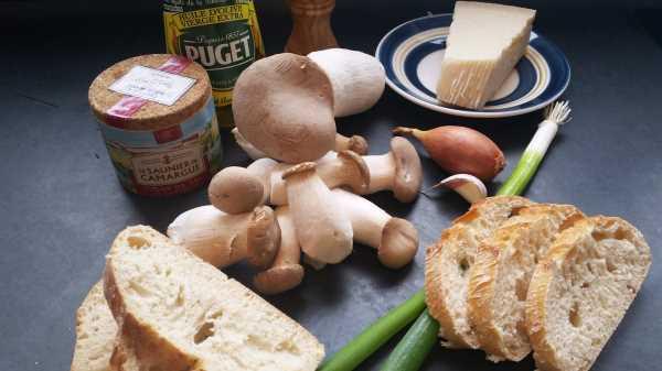 Kräuterseitlinge mit Parmesan - olivenöl - kochen aus liebe