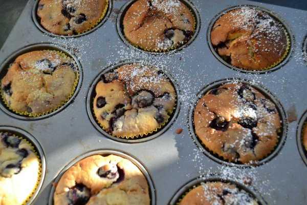 blaubeermuffins- rezept-mit-buttermilch-kochen-aus-liebe