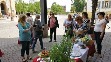 Blogger-Event in Speyer