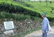 Fragwürdige Schilder in den Teeplantagen der Dambatenne Limited