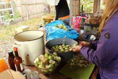Waschen und Vorbereiten der Äpfel