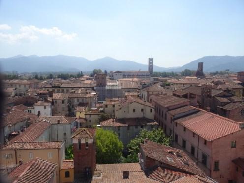 Dächer von Lucca