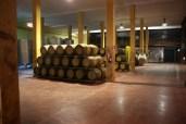Weinprobe in der Bodega.
