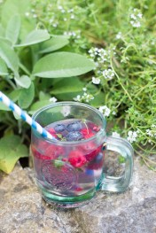 Berry Thyme Tonic 2