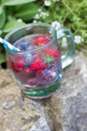 Berry Thyme Tonic 5