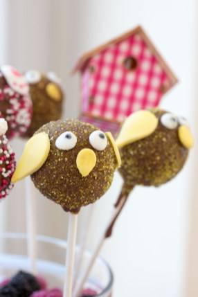 Oster Cakepops 1