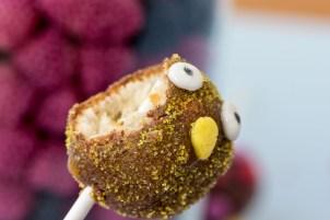 Oster Cakepops 9