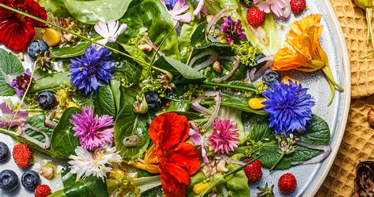 Bunter Blütensalat