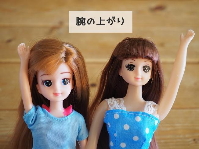 エリーちゃんとリンちゃんの特徴比較まとめ 腕の上がり方