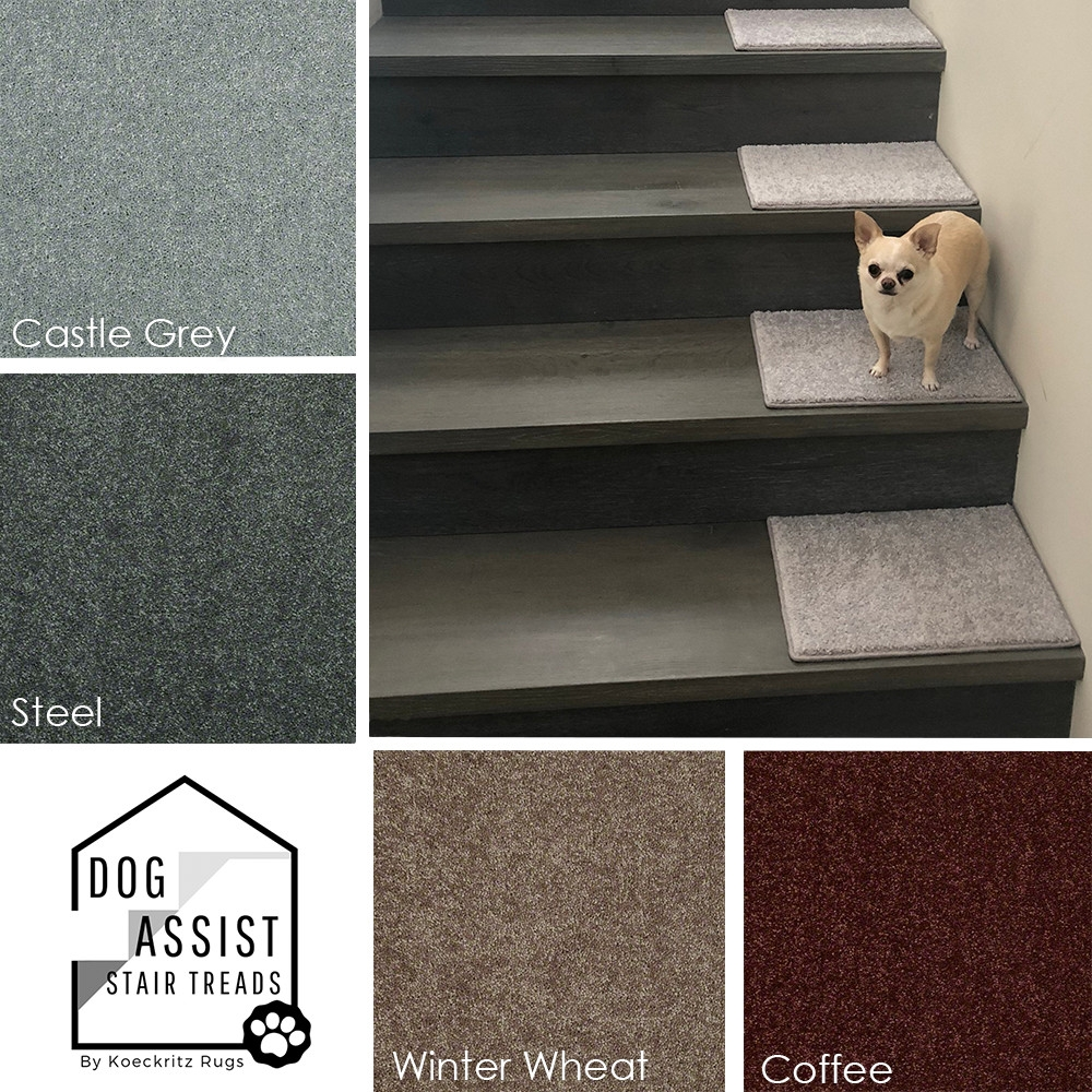 Orchard Mills Aii Dog Assist Carpet Stair Treads   Stair Treads And Runners   Flooring   Hardwood   Staircase   Bullnose Carpet Runners   Treads Carpet