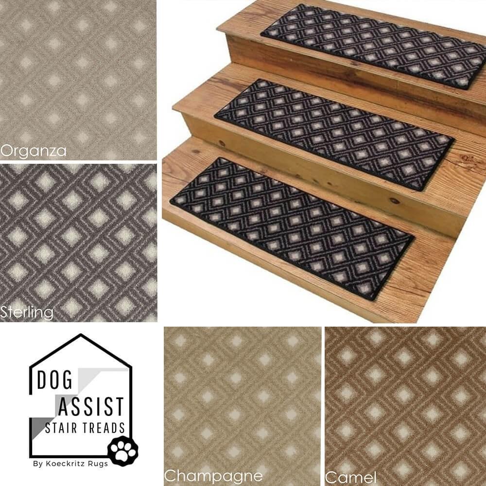 Diamante Ii Dog Assist Carpet Stair Treads | Installing Carpet Stair Treads | Anti Slip | Bullnose Carpet | Stair Risers | Indoor Stair | Wooden Stairs