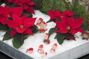 2016_Weihnachten_Schneelandschaft