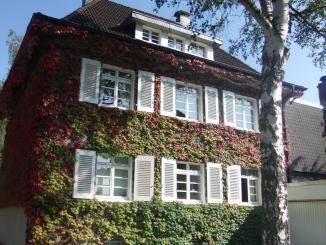 Haus in Rath-Heumar