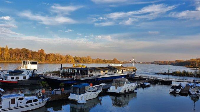 Bild vom Rhein in Rodenkirchen
