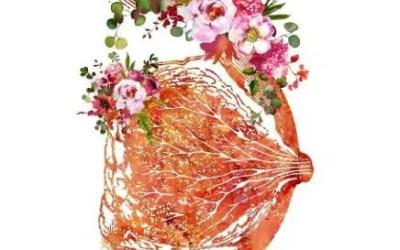 Masaje de pechos para prevenir cáncer de mama