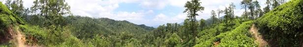 Blog0716-SriLanka-Panorama_Ella1