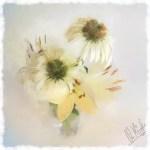 Das Sonnenlicht flutet einen Blumenstrauß im Digitaldruck, gemalt mit Photoshop