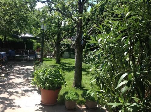 Gastgarten im Loibnerhof der Familie Knoll in Dürnstein in der Wachau