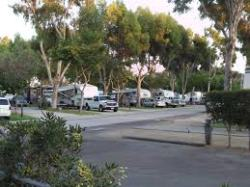 picture of campground showing RVs parked at sites.