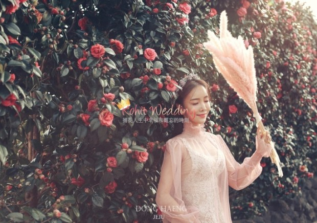 Camelias Jeju pre wedding photo 41