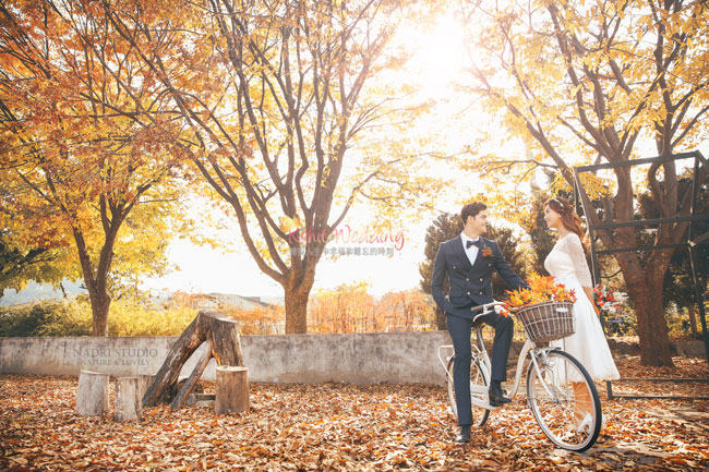 fall-(14)