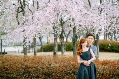 Kohit Wedding Korea Pre Wedding Photoshoot Nadri